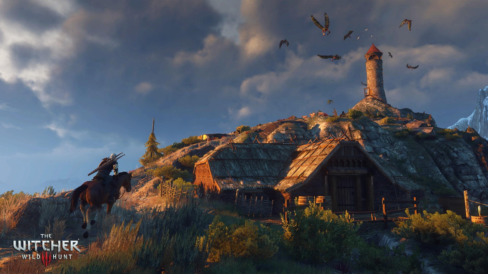 The_Witcher_3_Wild_Hunt_Don't_feed_the_birds--it_only_encourages_them