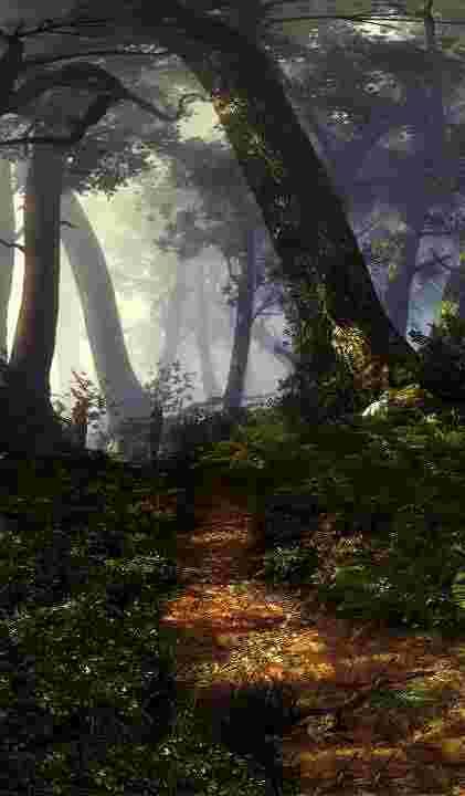 Флотзамський ліс
